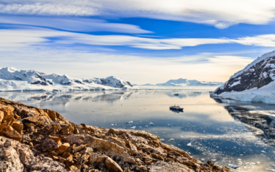 A Lesson in Stillness From Antarctica